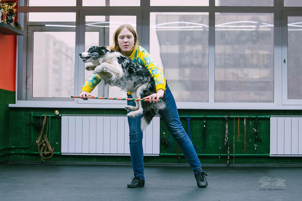Трюковая дрессировка с Алиной Дюковой. Фото10