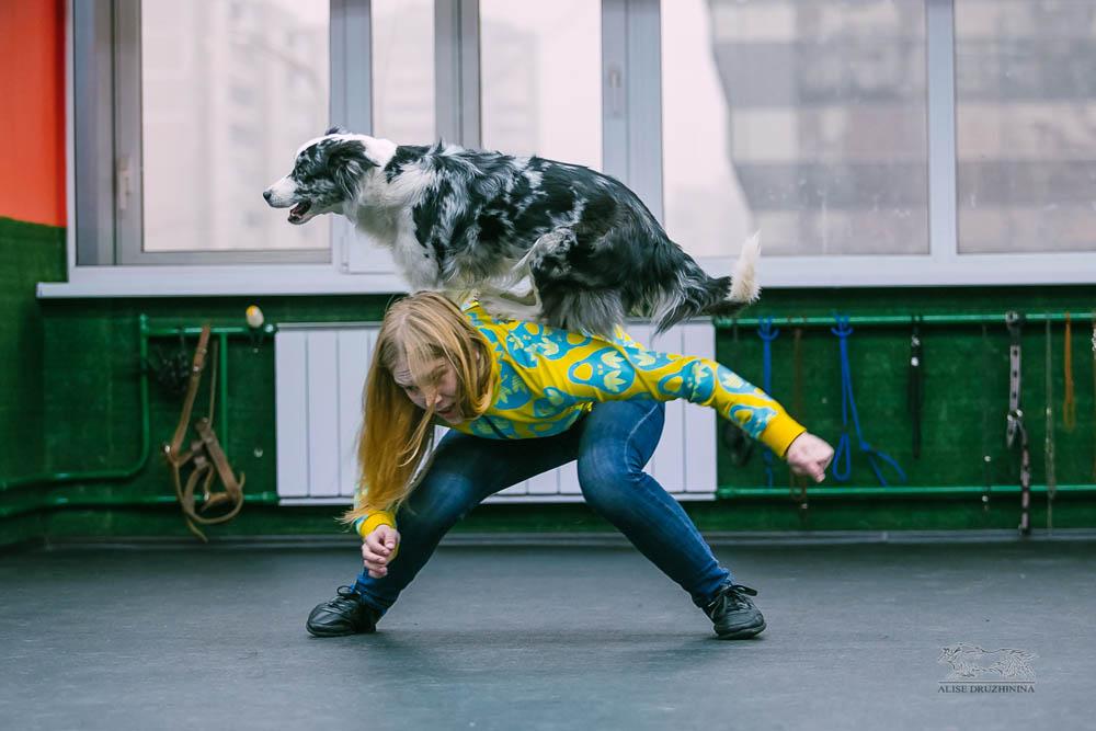 Трюковая дрессировка с Алиной Дюковой. Фото8