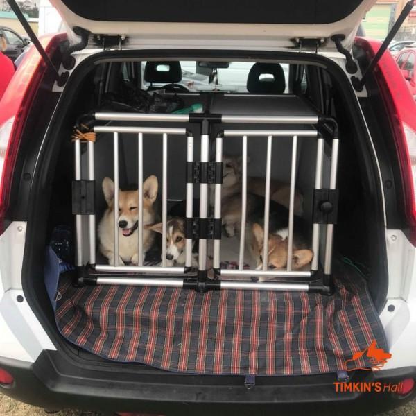 Собаку укачивает в машине. Что делать?