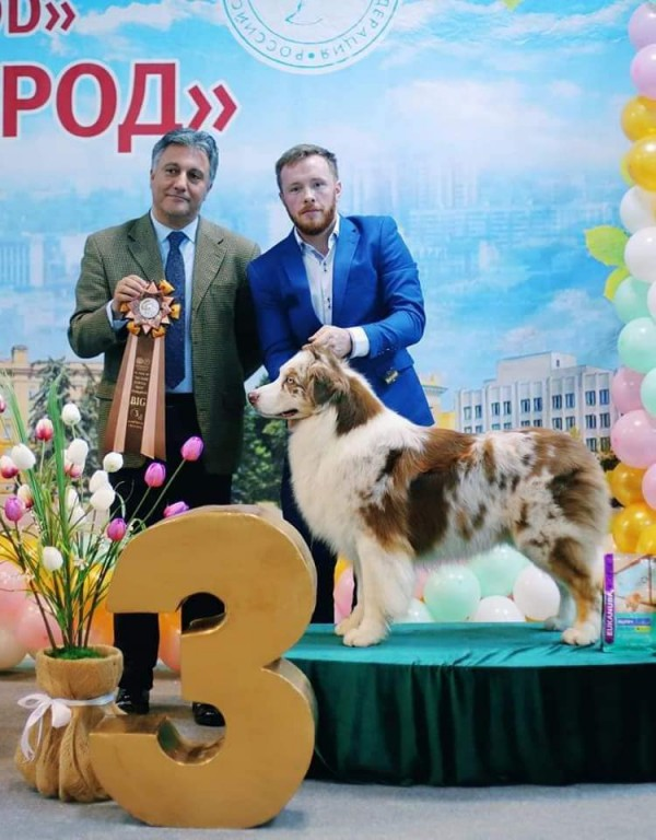 Новый хендлер Максим Катаев