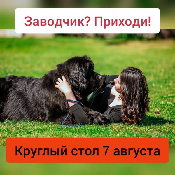 КРУГЛЫЙ СТОЛ ДЛЯ ЗАВОДЧИКОВ 07.08