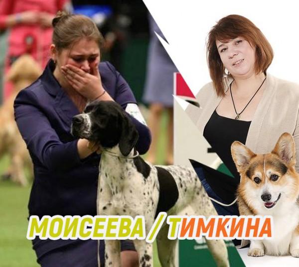 Интервью: хендлер Дарья МОИСЕЕВА