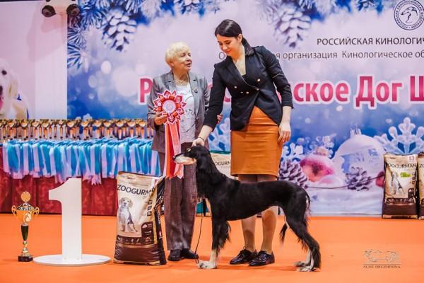 На выставке в Екатеринбурге разыграли поездку на Чемпионат Европы