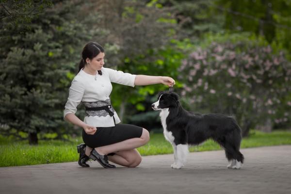 Уроки хендлинга с Ириной Тимкиной ONLINE фото